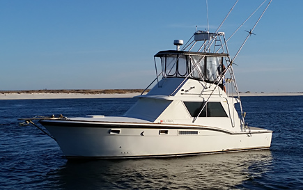 Daddy's Baby Charter Fishing, Gulf Shores, AL | Small Group Charter Fihsing in Orange Beach